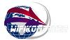 wifi_logo_100